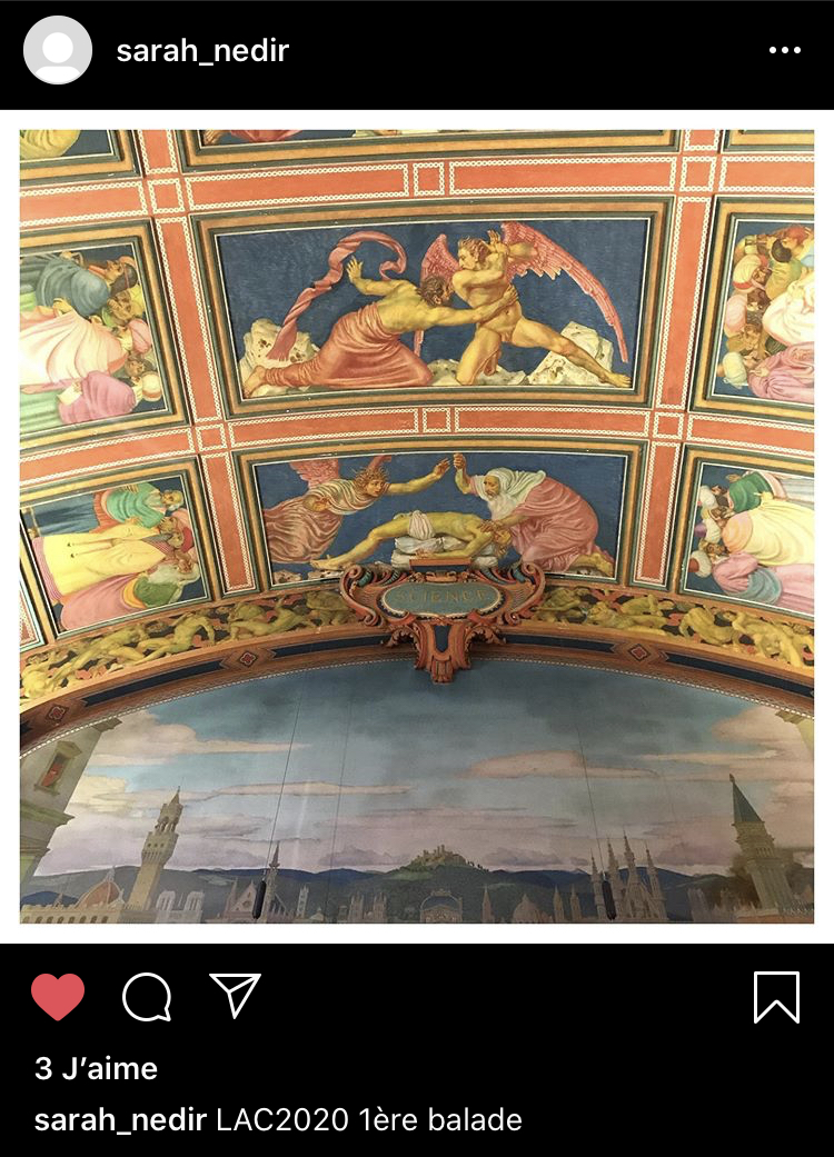 Capture d'écran Instagram / Sarah Nedir